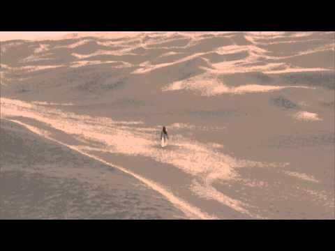 Sand waves at the Taklamakan Desert