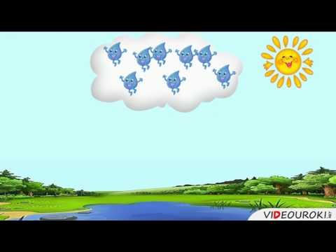Круговорот воды в природе видеоурок 3 класс пнш