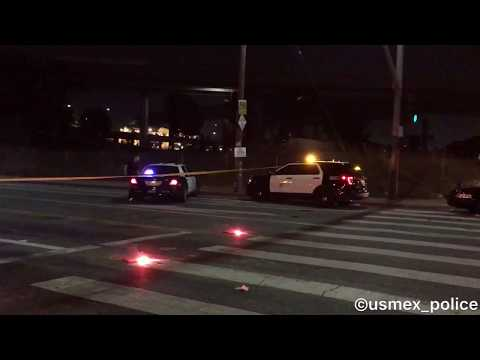 LAPD Southeast Division at a Homicide Shooting in South Los Angeles *RAW FOOTAGE*