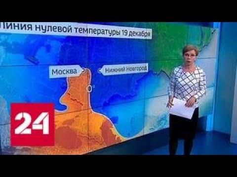 """""""Погода 24"""": видимость в Москве резко снизилась из-за тумана - Россия 24"""
