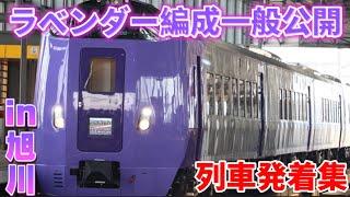 【新型車両】JR北海道 キハ261系 ラベンダー編成一般公開発着集