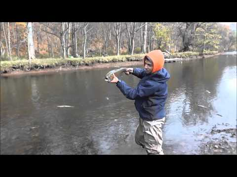 Oak orchard troutfest with the go pro doovi for Oak orchard fishing report