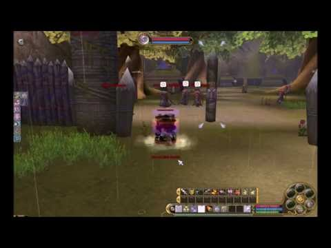 Ace Flyff :: Unique Level 150 Skills | FunnyCat TV