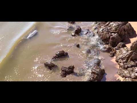 This is how Artist created CGI Beach, Wave simulatedin Houdini