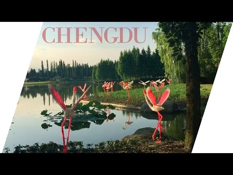 ♡ Chengdu, China 2016 ♡