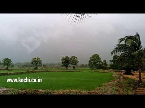 40 acres land at Kollengode, in Palakkad District | Kerala Property