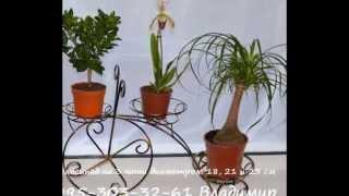Украина, Днепропетровск, Подставки для цветов(Это видео создано в редакторе слайд-шоу YouTube: http://www.youtube.com/upload., 2014-05-12T21:53:45.000Z)