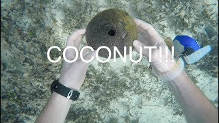 Treasure hunting in THAILAND - Finding stuff in ocean while cleaning corals!