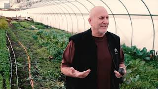 Creating Jobs for Returning Citizens in Poletown, Detroit: Recovery Park's Solar-Powered Greenhouses