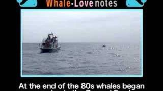 Whale-Love Wagon 09 - The Old Man and the Sea