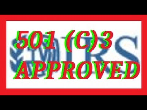 501 (c)3 For Dummies