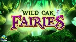New Slot Game: Wild Oak Fairies