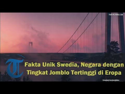 fakta-unik-swedia,-negara-dengan-tingkat-jomblo-tertinggi-di-eropa