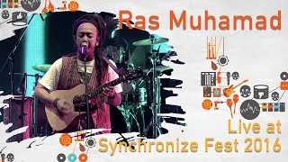 Ras Muhamad live at SynchronizeFest - 28 Oktober 2016