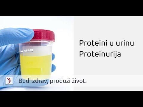 hipertenzija su proteinurija)