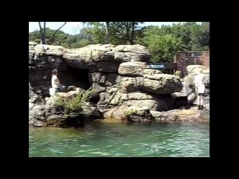 The Prospect Park Zoo Tour