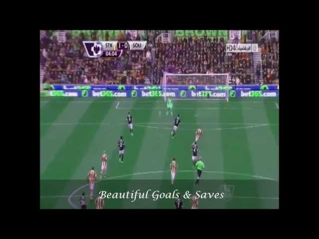 Asmir Begovic vs. Southampton