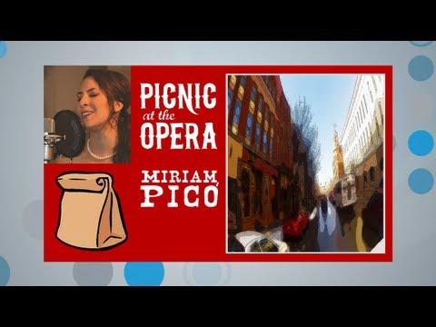 Picnic at the Opera featuring the Old Town Playhouse Players
