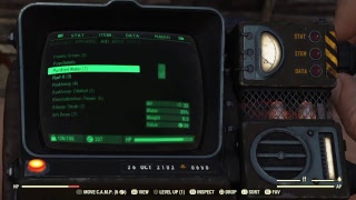 Fallout 76 RolePlay Day 1 : Reclamation Day Part 2