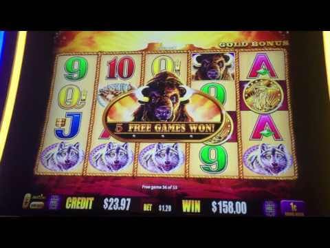 Buffalo Gold Las Vegas Hard Rock 75 free spins slot machine bonus round!