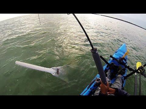 Key west kayak fishing battle with a sawfish youtube for Battle fish 2