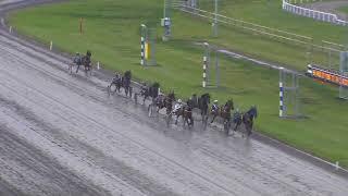 Vidéo de la course PMU PRIX HEATLOPP B - TRAVVECKANS LOPP