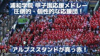 浦和学院 圧倒的・個性的な応援団!甲子園のアルプススタンドを真っ赤に!応援メドレー(2018 準々決勝)