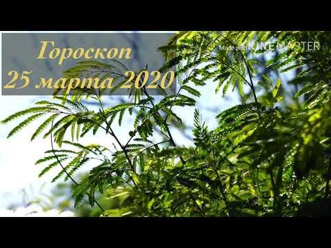 Гороскоп 25 марта 2020. Лунный Календарь 25.03.2020. Гороскоп для всех знаков зодиака