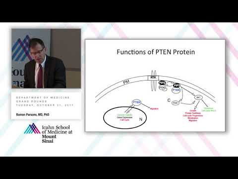 PTEN and Cancer