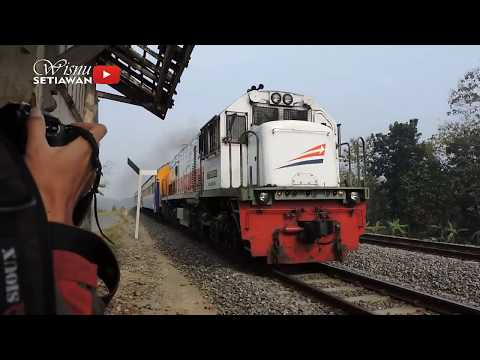 TRAIN AT SPEED!! High Speed Indonesian Train Compilation