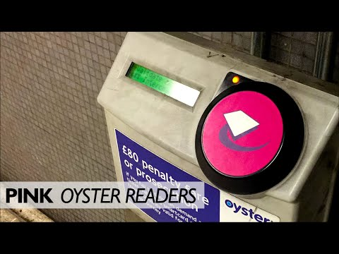What Are Pink Oyster Readers For?