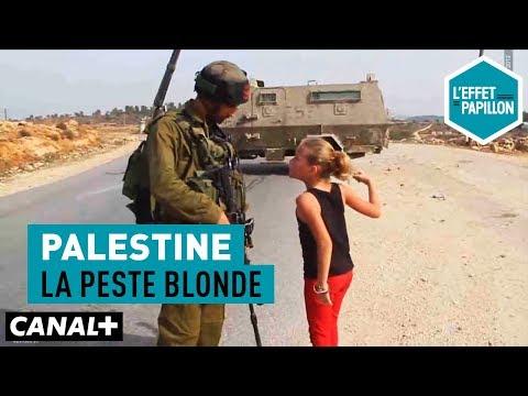Palestine : La Peste Blonde - L'Effet Papillon