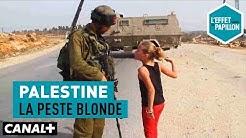 Palestine : La peste blonde - L'Effet Papillon – CANAL+