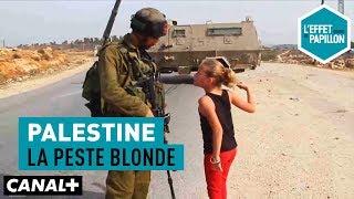 Palestine : La peste blonde - L'Effet Papillon - CANAL+