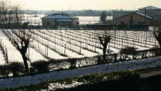 Vino Franciacorta Brut Ricci Curbastro - www.winexplorer.it