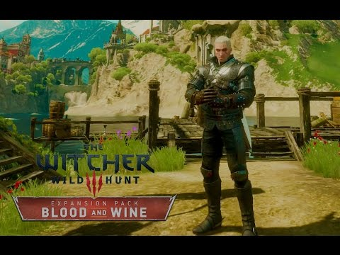 Witcher  New Game Plus Build