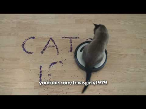 Smart Roomba Cat writes CATS 101. Super AWESOME!!! (Original speed)