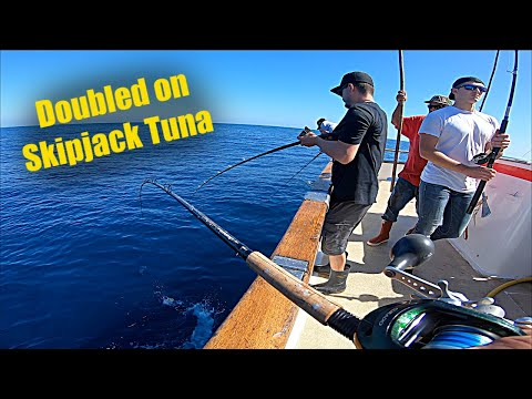 How To Fish On A Charter Boat (Skipjack Tuna Everywhere!)