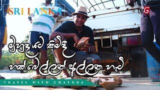 Travel With Chatura | මුහුද යට කිමිදී හක් බෙල්ලන් අල්ලන හැටි  (Vlog 212) [EN Sub] Thumbnail