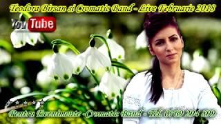 Teodora Birsan si Cromatic Band - Program Live Februarie 2018 - Muzica De Petrecere (Videoclip Hd)