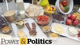 Scheer slams 'ideologically driven' Canada Food Guide | Power & Politics