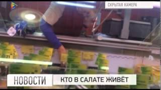 Съемочная группа телеканала Мой город провела контрольную закупку готовых салатов