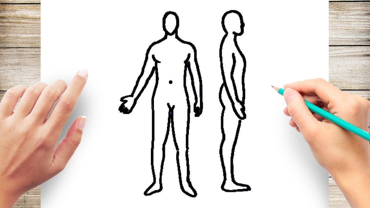 How To Draw Human Body Step By Step For Kids Youtube