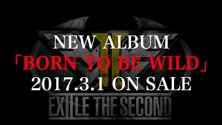 EXILE THE SECOND / 【アルバム全曲紹介】 NEW ALBUM「BORN TO BE WILD」