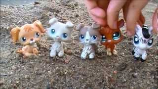 LPS: What Makes You Beautiful - Music Video