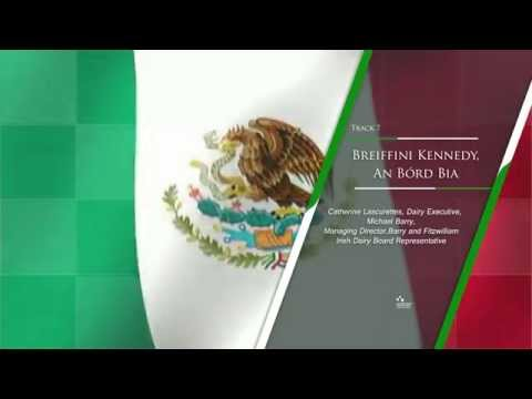 Dublin - Mexico Conference Networking Tracks