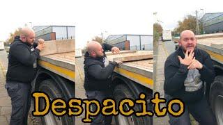 Luis Fonsi Despacito funny version TikTok musicaly.mp3