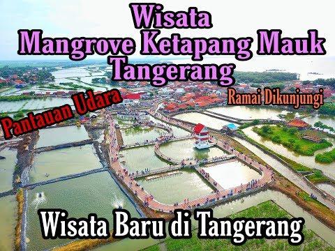 Wisata Mangrove Desa Ketapang Mauk Tangerang - Pantauan Udara
