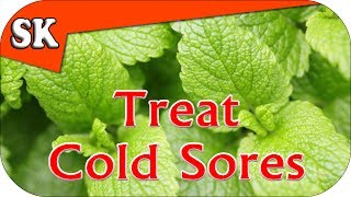 NATURAL COLD SORE REMEDY - Avoid Pharmaceuticals