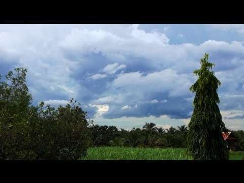 The August Monsoon as seen from my house near Vientiane, Laos.....
